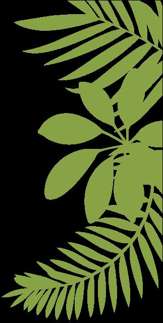 עלים ירוקים
